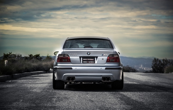 Picture road, trees, blue, bmw, BMW, shadow, blue, back, e39, the curb
