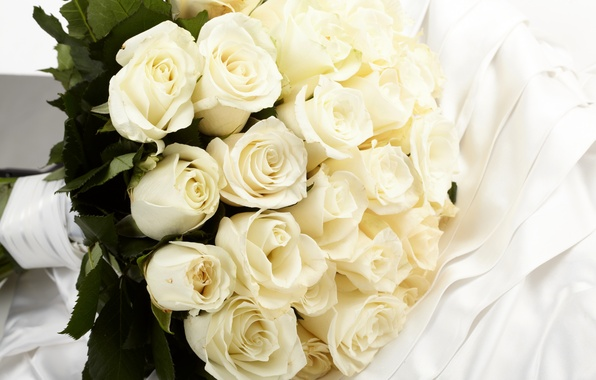 Picture flowers, roses, bouquet, fabric, white