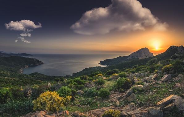 Picture sea, sunset, rocks, coast, France, France, Corsica, The Mediterranean sea, Mediterranean Sea, Corsica