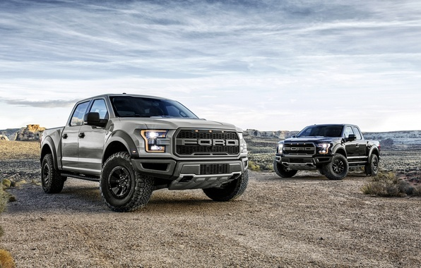 Picture Ford, Ford, Raptor, pickup, Raptor, F-150