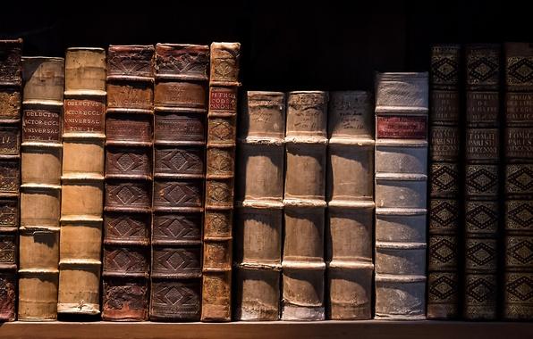 Picture macro, background, books
