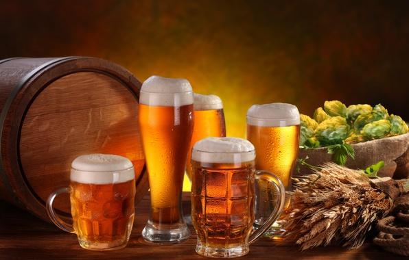 Picture foam, table, beer, glasses, ears, mugs, light, barrel, hops