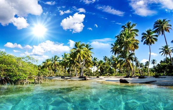 Picture sea, beach, the sky, the sun, clouds, nature, tropics, palm trees, the sun's rays