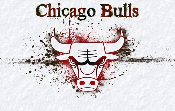 Picture background, logo, logo, basketball, Logo, NBA, Chicago Bulls, bull, NBA, Basketball, Chicago bulls