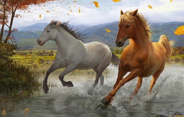 Picture leaves, squirt, river, tree, the wind, horse, art, running