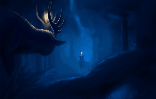 Picture forest, animals, night, art