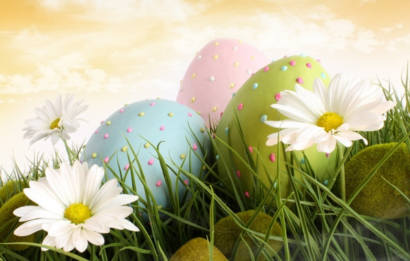 Picture grass, moss, chamomile, eggs, Easter