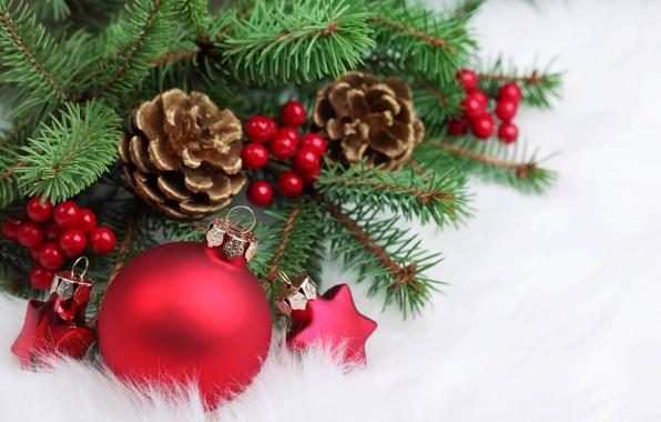 Picture stars, red, berries, holiday, tree, new year, ball, Christmas, branch, christmas, new year, bumps, Christmas …