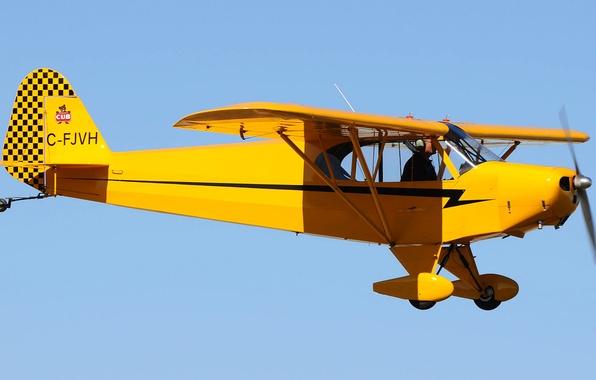 Picture the sky, flight, retro, the plane, pilot