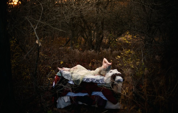 Photo wallpaper Princess and the Pea, Hans Christian Andersen, fairy tale, girl, forest