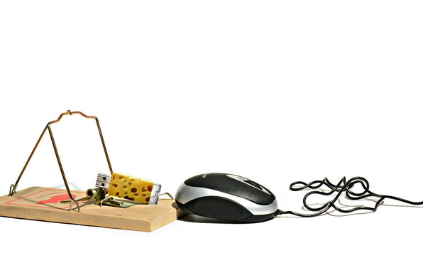 Photo wallpaper mousetrap, mouse, cheese