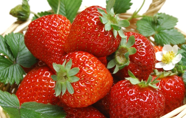 Picture leaves, berries, basket, food, strawberry