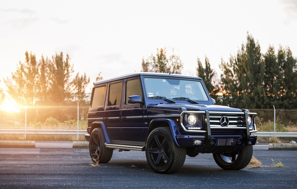 Picture Blue, Tuning, Mercedes, AMG, Drives, SUV, Gaelic, G-class, Mercedesб G55