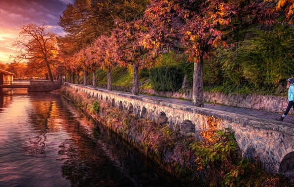 Picture trees, river, treatment, alley, Sunset walk
