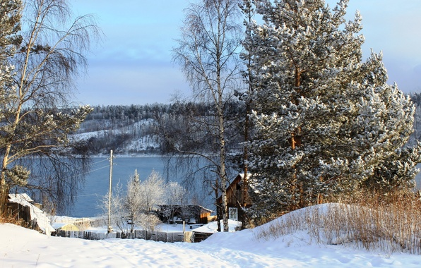 Picture winter, snow, trees, nature, river, photo, Russia