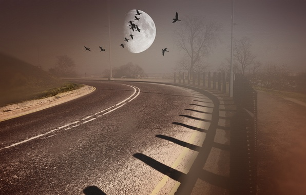 Picture road, birds, style, background