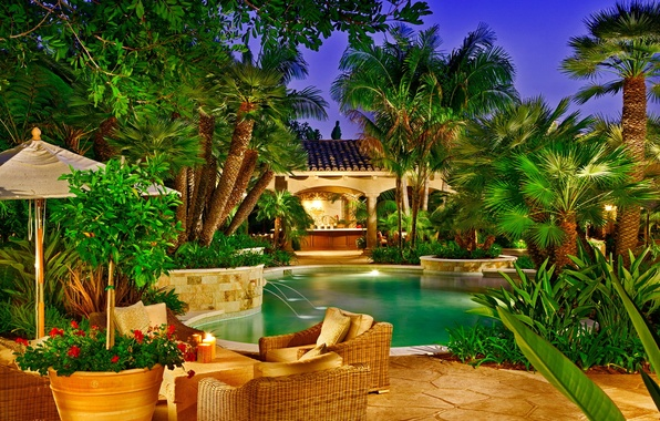 Picture palm trees, Villa, pool, exotic