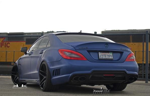 Picture Blue, CLS, Mercedes, Mercedes, Wald, Black Bison