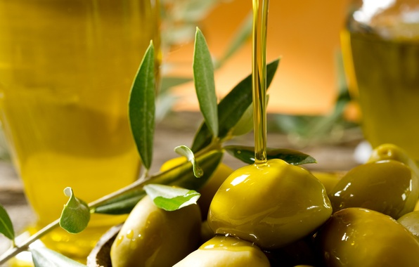 Picture oil, branch, olives, bokeh