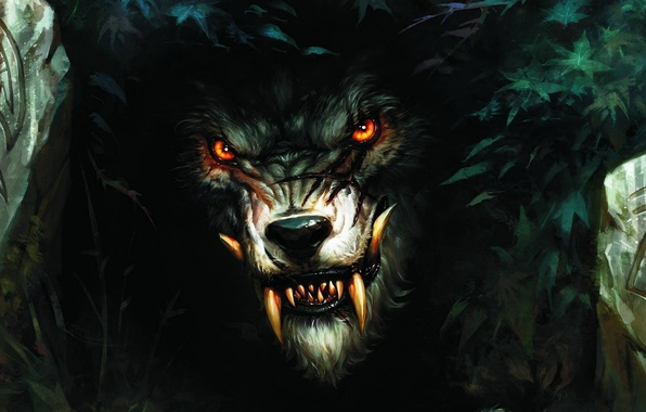 Picture wolf, teeth, werewolf, the bushes