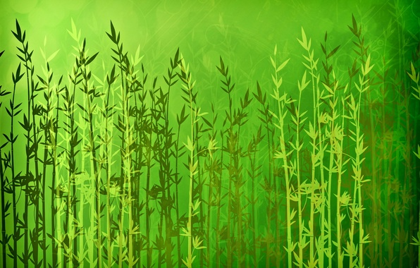 Picture light, line, nature, green, glare, background, abstraction, stick, plants, texture, leaves, brightness