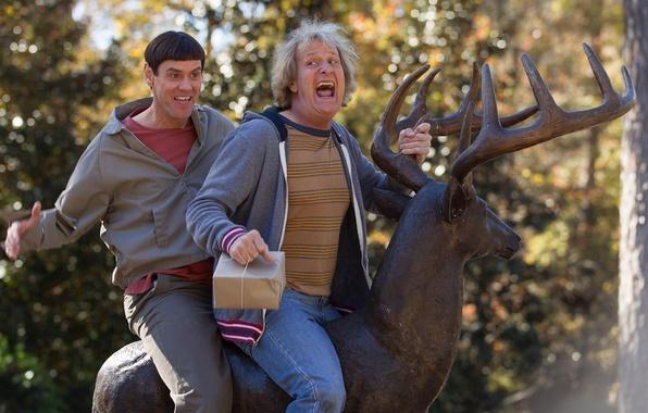 Picture Jim Carrey, Jim Carrey, Lloyd Christmas, Jeff Daniels, Harry Dunne, Jeff Daniels, Dumb and Dumber …