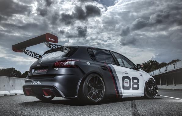 Picture race, Peugeot, Peugeot, 308, 2016, Racing Cup