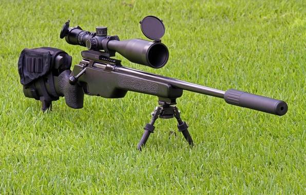 Picture grass, weapons, optics, rifle, muffler, sniper, SakoTRG-22