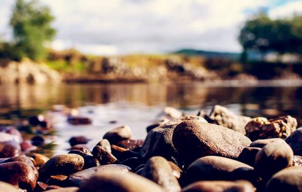 Picture macro, nature, stones, blur, bokeh