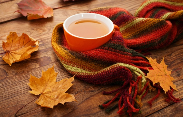 Image result for autumn scarf