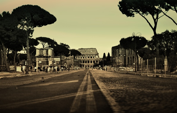 Picture road, trees, the city, people, street, Colosseum, Italy, Rome