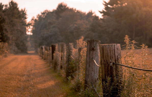 Photo wallpaper road, the evening, the fence, twilight
