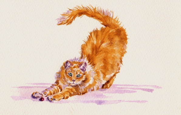 Picture cat, cat, watercolor, stretching