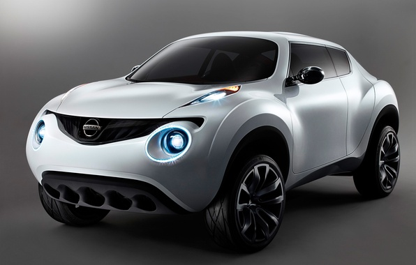 Picture Concept, Nissan, Win