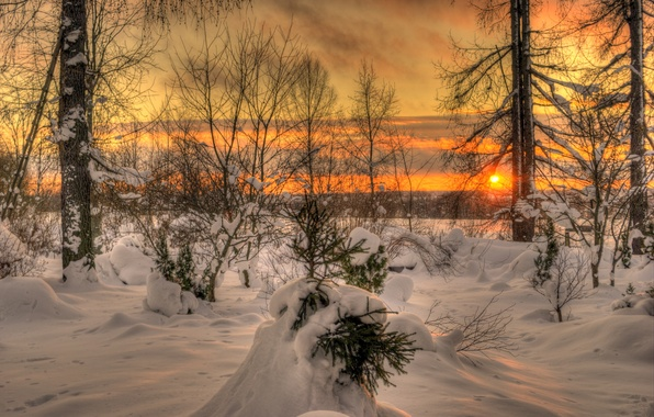 Picture winter, the sky, the sun, clouds, landscape, sunset, nature, white, white, sky, landscape, nature, beautiful, ...