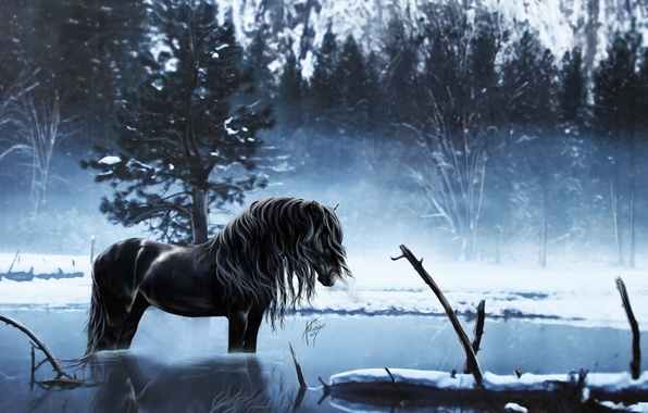 Picture winter, water, snow, trees, lake, reflection, horse, horse, art