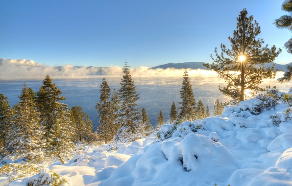 Picture winter, snow, trees, mountains, lake, sunrise, dawn, morning, CA, Nevada, California, Nevada, Sierra Nevada, Lake …