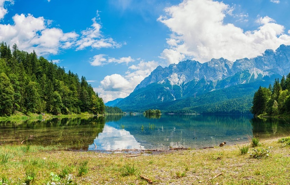 Picture forest, the sky, grass, water, clouds, trees, mountains, lake, reflection, shore, panorama