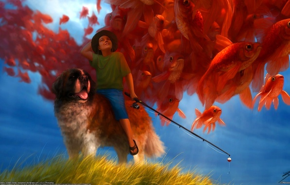 Picture fish, dog, fisherman, boy, rod, Liam Peters