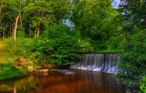 Picture trees, Park, England, waterfall, HDR, Yarrow Valley Country Park
