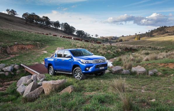 Picture jeep, Toyota, pickup, Hilux, 4x4, Toyota, Hilux, Double Cab, SR5, AU-spec, 2015, helix