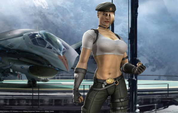 Picture the plane, form, Sonya, Kombat, Mortal