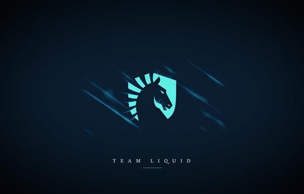 Wallpaper dota 2, blue background, team liquid, csgo, cs ...