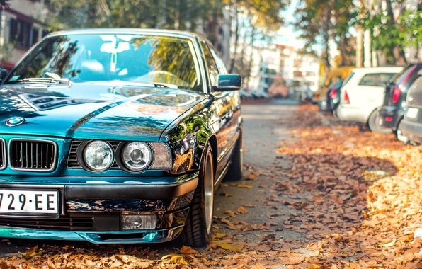 Picture autumn, leaves, BMW, tuning, E34, 525