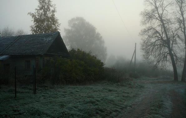 Picture fog, house, village