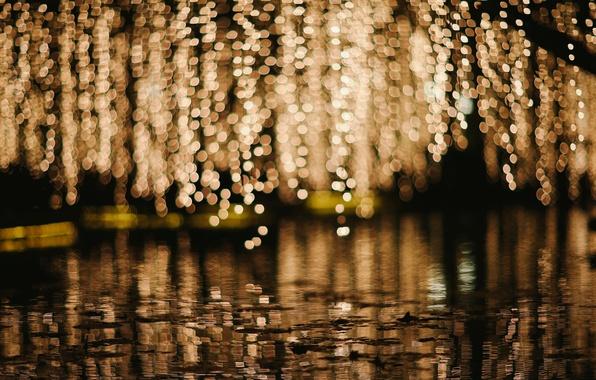 Picture water, macro, lights, background, rain, Wallpaper, people, blur, puddle, wallpaper, rain, widescreen, background, macro, bokeh, …