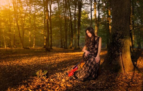 Picture autumn, forest, girl, violin, violinist