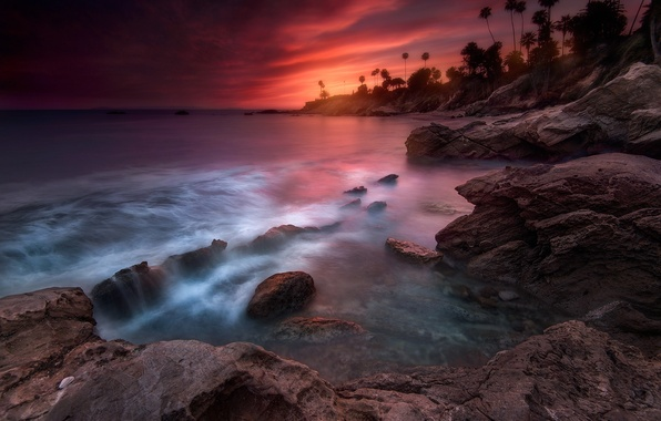 Picture beach, palm trees, the evening, excerpt, Laguna, CA, USA, state