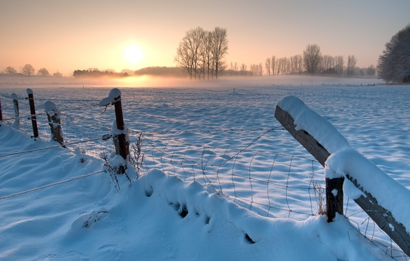 Picture winter, field, the sky, the sun, snow, trees, sunset, the fence, the evening, Germany, the …
