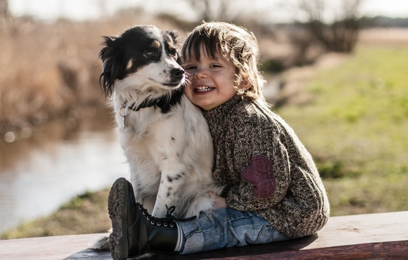 Picture joy, mood, dog, boy, friends